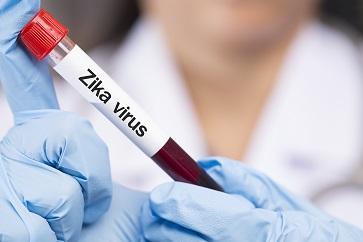Cientistas brasileiros utilizam vírus da zika para destruir tumores neurais