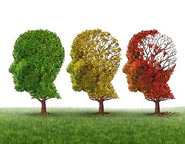 Marca-passo aplicado no lobo frontal do cérebro pode agir contra sintomas do Alzheimer
