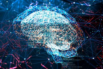 Iniciativa quer aumentar visibilidade de pesquisas latino-americanas sobre cérebro