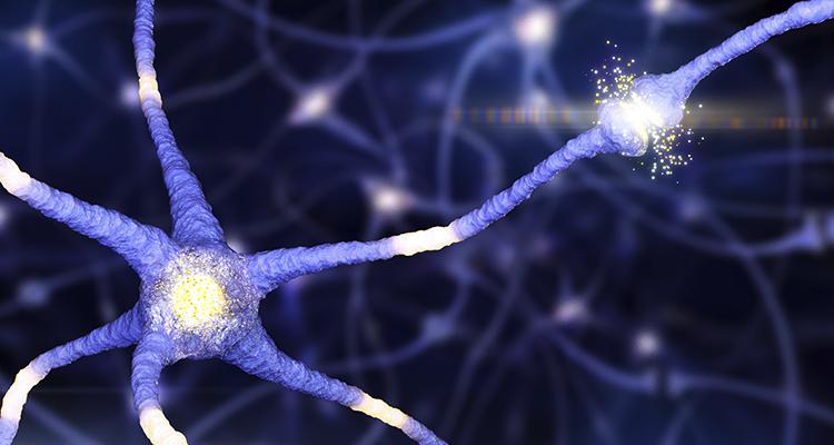 Os tipos de neuropatias periféricas