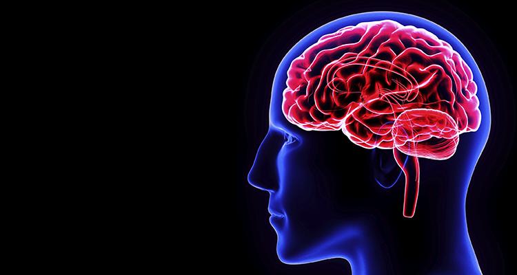 Acompanhe o Minuto Neuro: Vídeos com conteúdo exclusivo